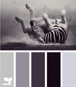 ZebraTones